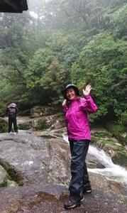 今日は屋久島の山に入りました。