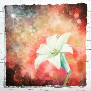 【ART】Lily