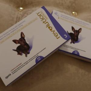 フィラリアの薬をお得な通販『うさパラ』で買いました🐾使用期限や到着までの日数について
