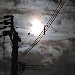 月の明かりと足の浮腫
