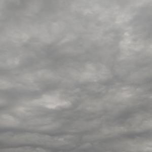 曇天とハレ