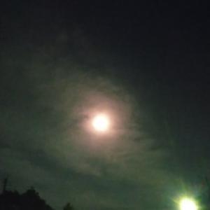空を照らす月と地上を照らすもの。