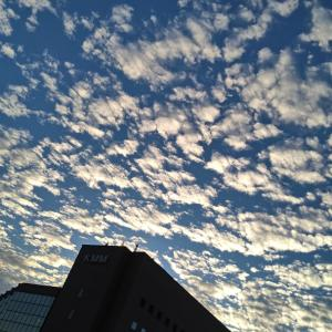 いわし雲にひつじ雲、鯖雲にうろこ雲、さぁどっち?