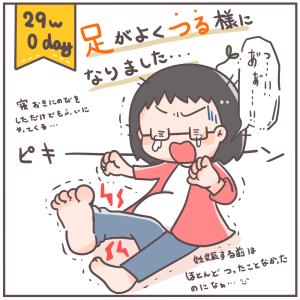 妊娠後期になって襲ってきたもの(29w0day)