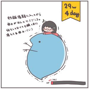 ロープウェーとミジンコ体力(29w1~4day)