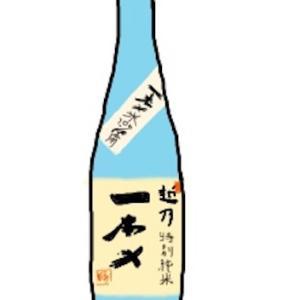今日のお酒:越乃一本〆