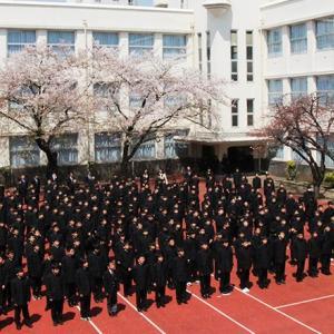 麻布中学 受験 2020年入試 まとめ