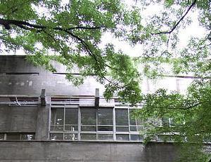 早稲田大学高等学院 高校受験(男子校) まとめ