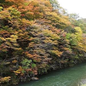 津軽白神湖の秋色