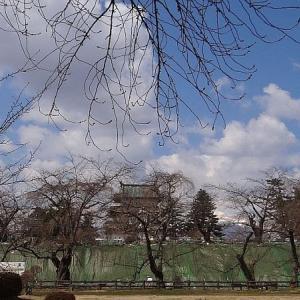弘前公園桜の開花予想は