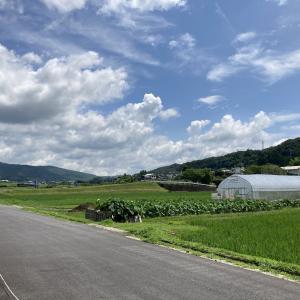 【松本旅②】長野県は日本No.4の広さの都道府県、の巻