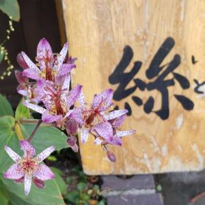 レトロな街  会津若松市七日町通りを ぶらぶらお散歩👣
