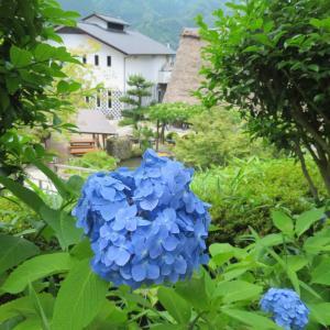 下呂温泉♨合掌村 食べて見て歩いて満喫✨ & とちの実煎餅ソフト🍦🍘