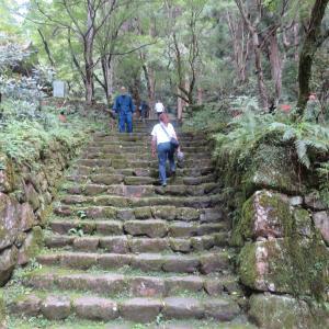 台風の悲惨な想い出😓 と 石階段のお寺さん 室生寺 散策