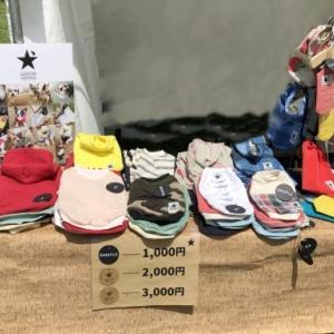 ★GW開催!ドッグマラソン東京大会 レポート★