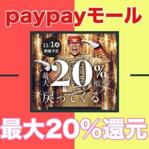 【動画でも解説】paypayモールで100億円あげちゃうキャンペーン