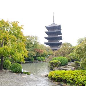 久々京都から