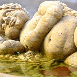 (睡眠時無呼吸症候群》!『肥満』でも『食習慣』でも起こりうる可能性があります!