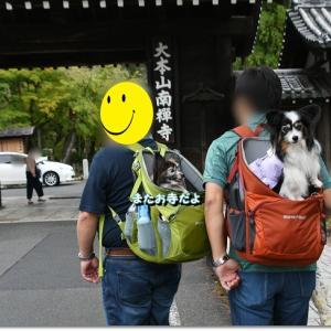 さあらちゃん家と京都旅行Vol.5~南禅寺とおしゃれカフェ~