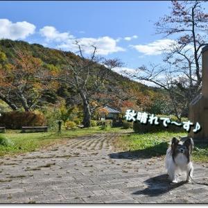 岳温泉・散策♪