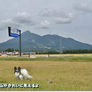 ウルトラマンARスタンプラリー~猪苗代湖コース~