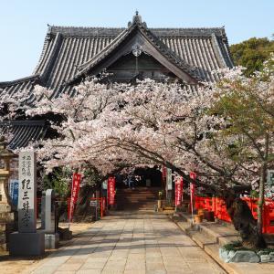 【三国三十三所】和歌山にある2番、紀三井寺。