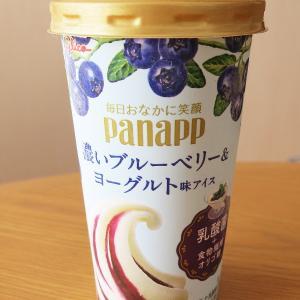 毎日おなかに笑顔 パナップ 濃いブルーベリー&ヨーグルト味アイス