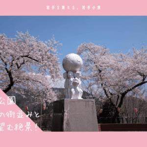 薬師公園の桜・お花見情報2019。釜石の街並みと桜を望む絶景!