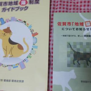 佐賀市の地域猫活動中とガイドブック新しくなりました