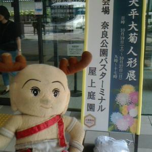 天平大菊人形展 ❁❁