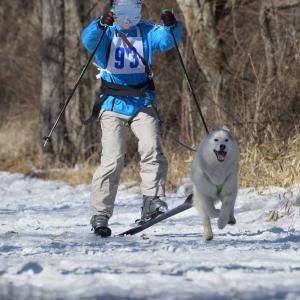 スキージョーリングもおすすめです