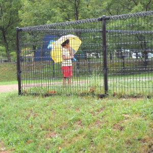 雨キャンプの遊びを拡げてくれたアイテム