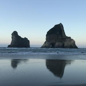 NZレンタカー8日目~現地の人お勧めトレッキング&誰もが見たことあるwindowsの壁紙でおなじみのbeachに行ってみた~
