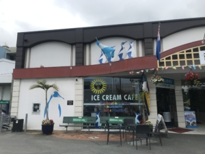 NZレンタカー10日目~Picton移動・2019→2020年越しinNZ・2019年振り返り~