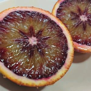愛媛産ブラッドオレンジで、気分はシチリア。