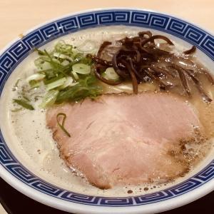 博多ラーメン10-1CHI0-(いちお)@富山県富山市