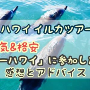 【ハワイイルカツアー】人気で格安の「シーハワイ」の感想レビュー!