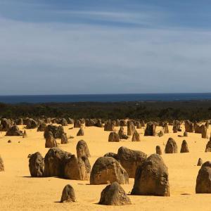 【オーストラリア ラウンド1日目】北西オーストラリアのピナクルズとランセリン大砂丘へ!