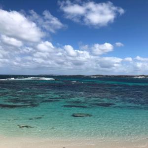 【パース】海が綺麗すぎるロットネスト島!おすすめの回り方&アドバイス!