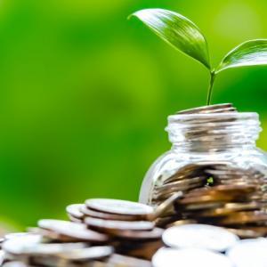 投資信託はコツコツ続けることが大切。積み立て金額を減らして運用中です