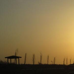 【豊浜漁港】 今回はなかなか厳しい日