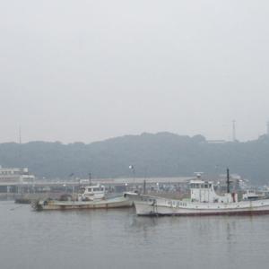 【豊浜漁港】 今年はアジが渋い