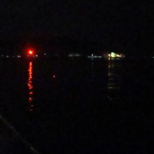 【豊浜漁港】 タチウオの様子を見に