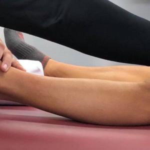 膝の柔軟性