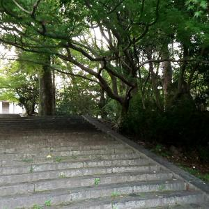 森林ウォーキング&コロナ感染予防
