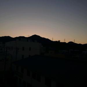真夏の夕方散歩・・・