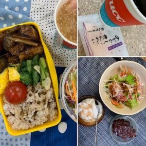 0725:月曜断食 32日目-良食日/維持メニュー