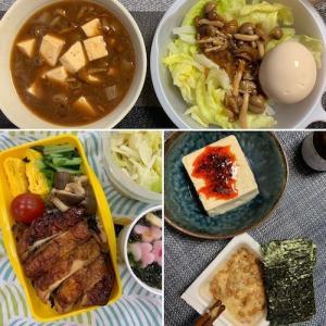 0724:月曜断食 31日目-良食日/維持メニュー