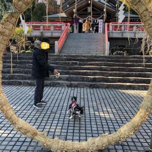 犬と一緒に正月旅行! 伊豆高原に観光編 その1