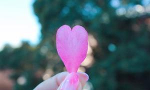 離れていても愛や友情が深まる「スペイン語」33の言葉